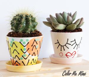Encino Cute Planters